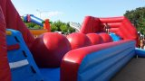 Inflable guaypaut